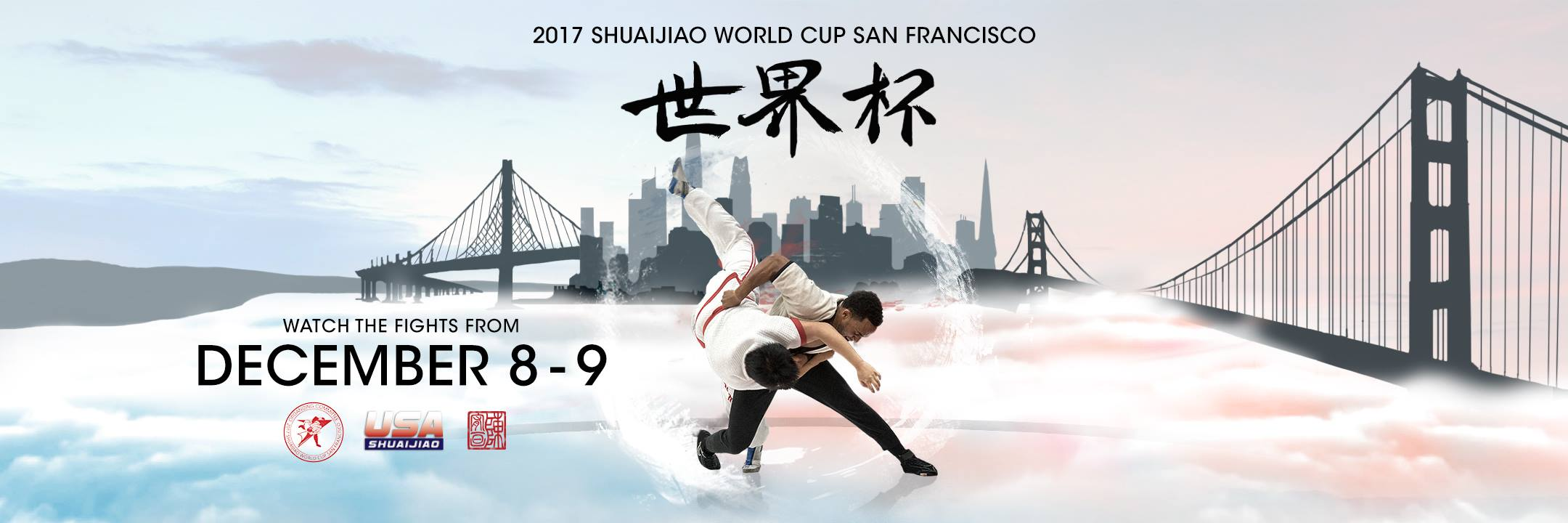 2017_world_cup_header_site